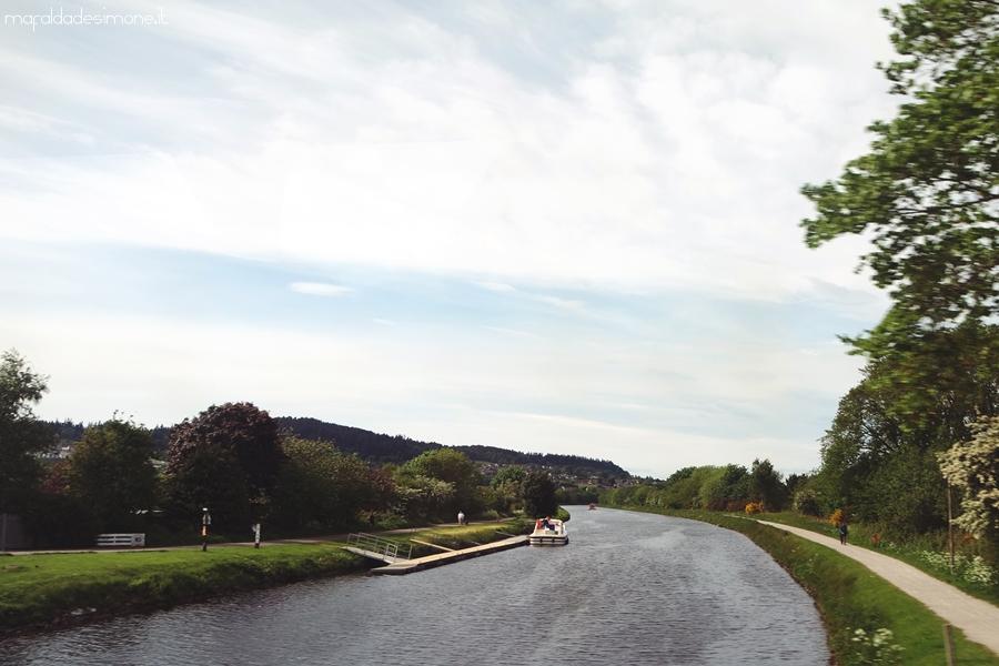 Timberbush Tour - Mafalda de Simone